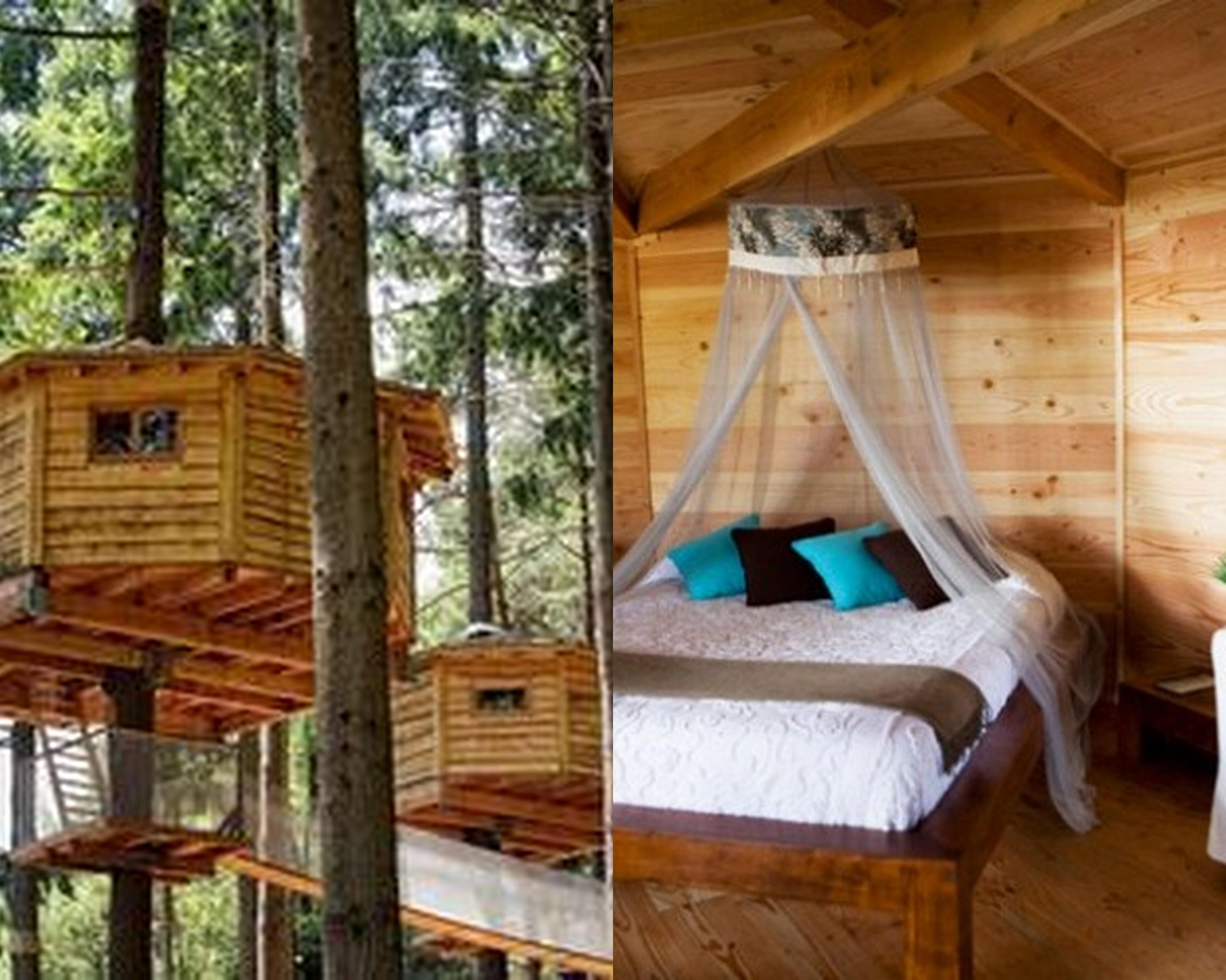 Hoteles curiosos en espa a viajes al alcance de todos - Casas en los arboles sant hilari ...