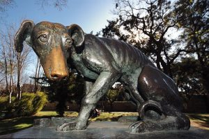 Monumento al perro abandonado de Salamanca